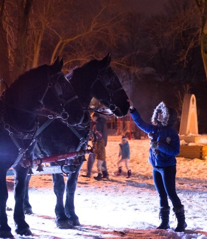 Child touching horse